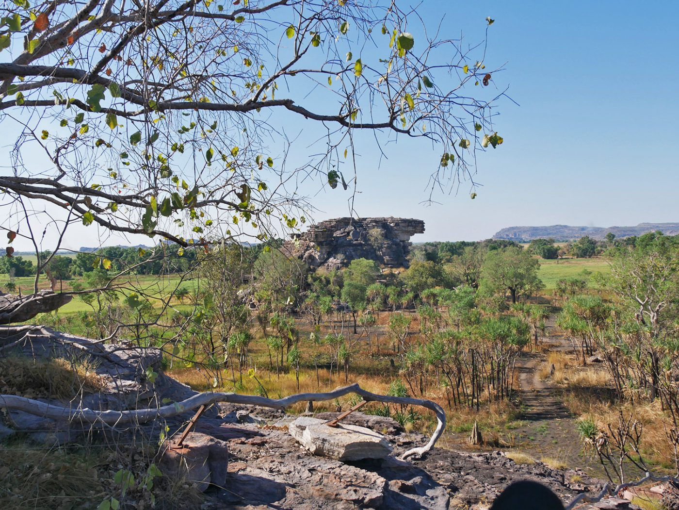 View from the Ubirr Rock