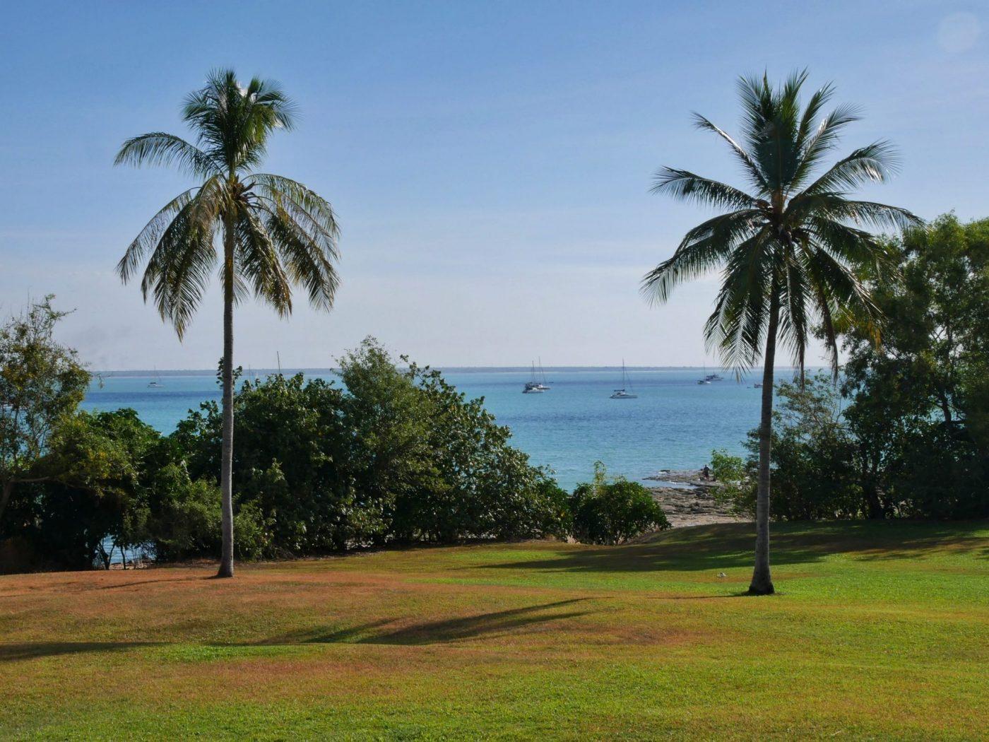 Palm trees and sailboats at Fannie Bay in Darwin