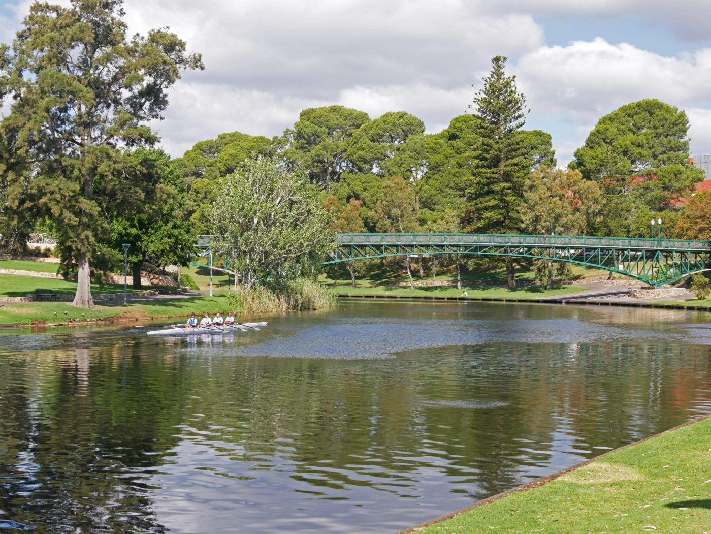 Rowers on the river - what to do in Adelaide