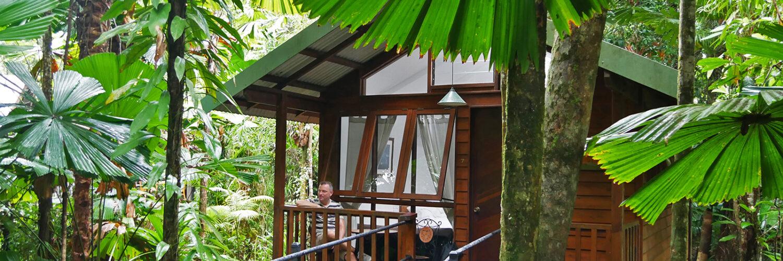 Daintree Wilderness Lodge - Cape Tribulation