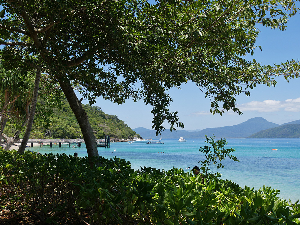 View of the pier and mountains - Fitzroy Island