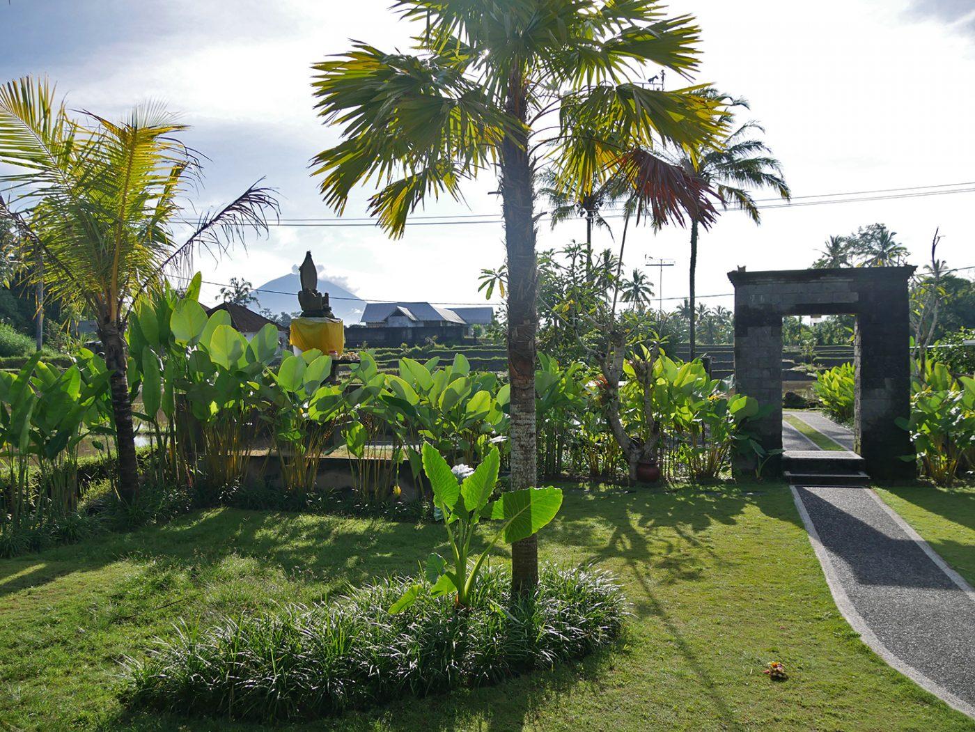 Sleeping between the rice fields in Ubud on Bali